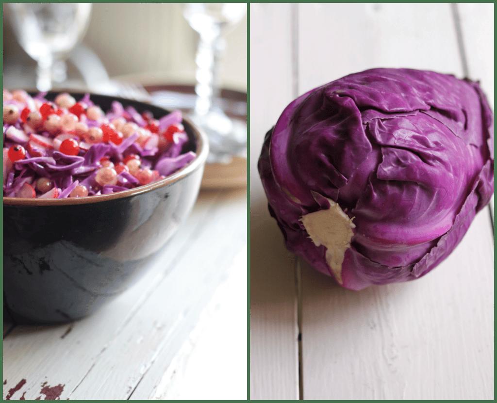 Lilla spidskålsalat med ribssaft og pink ribs