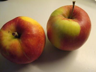 Æbletærte - kun med æbler