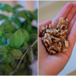 Kitchenguide: Fordi pesto bare er bedre uden solsikkeolie og brødkrummer