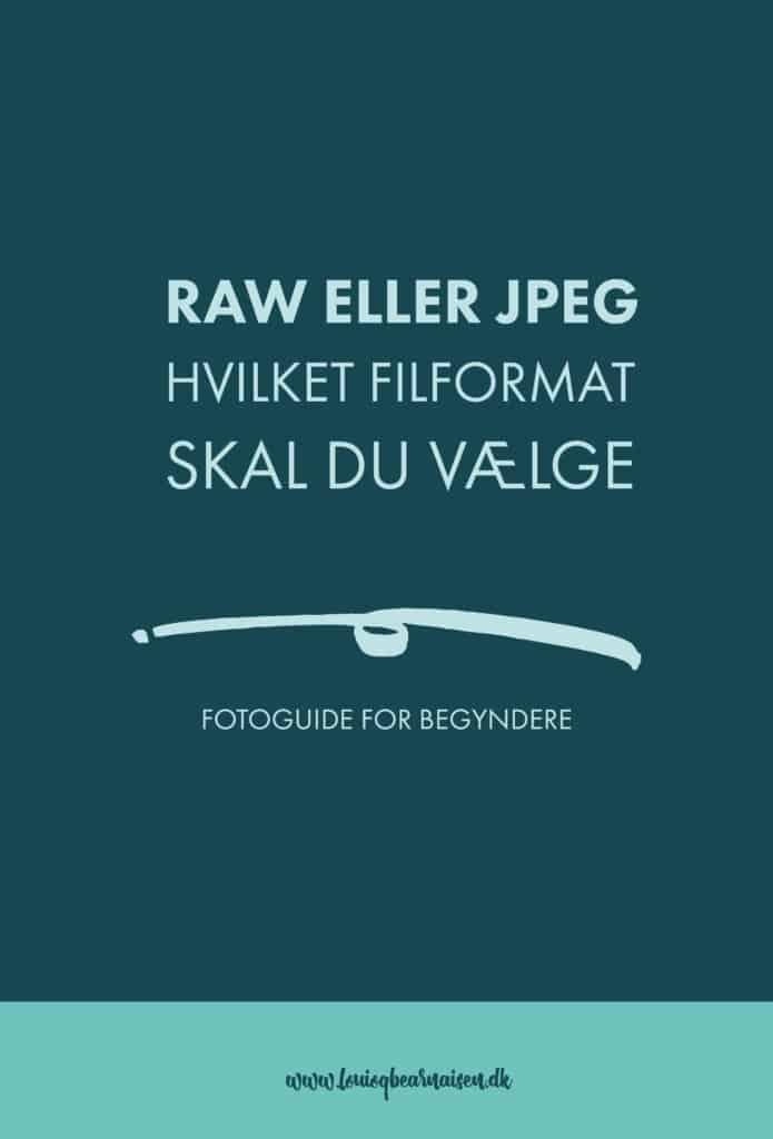 RAW ELLER JPEG - HVILKET FILFORMAT SKAL DU VÆLGE
