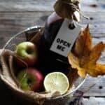 Hjemmelavet hyldebærsaft med æble