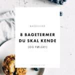 BAGEGUIDE - SÅDAN bager du kager